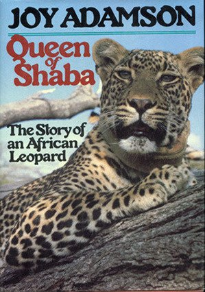 9780151756513: Queen of Shaba : The Story of an African Leopard