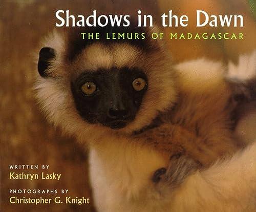 9780152002589: Shadows in the Dawn: The Lemurs of Madagascar
