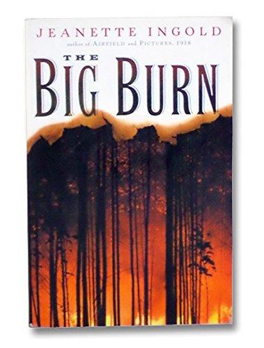 9780152047467: The Big Burn