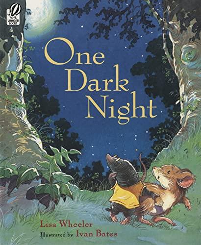 9780152058883: One Dark Night