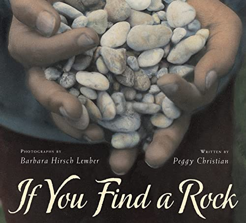 9780152063542: If You Find a Rock
