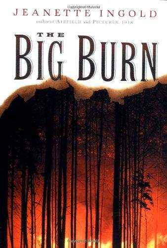 9780152164706: The Big Burn