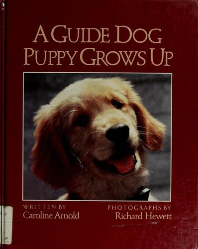 9780152326579: A Guide Dog Puppy Grows Up