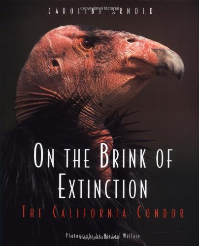 On the Brink of Extinction: The California: Arnold, Caroline