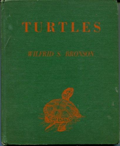 9780152914110: Turtles