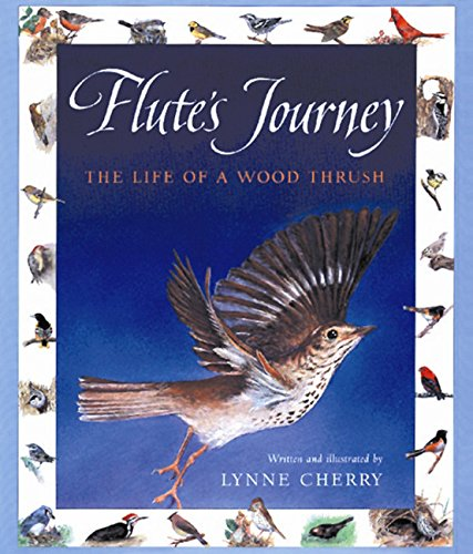9780152928537: Flute's Journey: The Life of a Wood Thrush