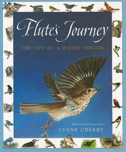 9780153143694: Harcourt School Publishers Collections: Chapter Book Grade 4 Flute's Journey
