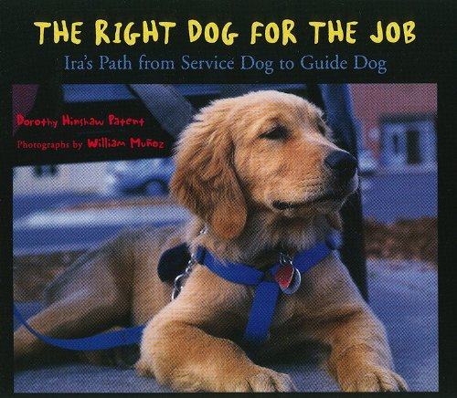 9780153651281: Storytown: Challenge Trade Book Story 2008 Grade 3 Right Dog/Job