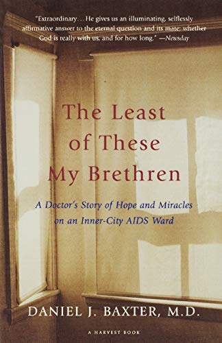 9780156005883: The Least of These My Brethren: A Doctor's Story of Hope and Miracles in an Inner-City AIDS Ward