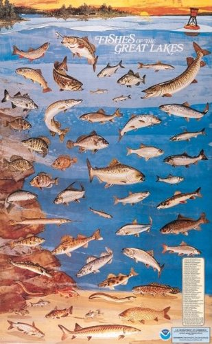 9780160724404: Fishes of the Great Lakes