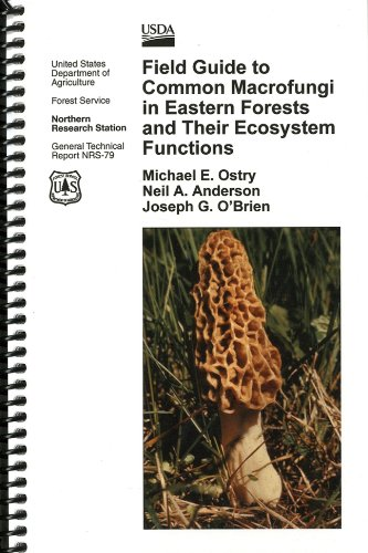 9780160886119: Field Guide to Common Macrofungi in Eastern Forests and Their Ecosystem Functions