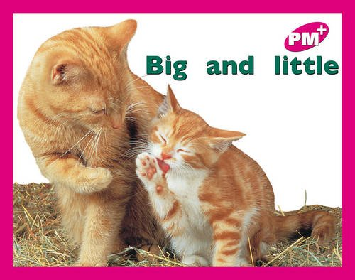 9780170095396: PM PLUS MAGENTA 2 FCN BIG AND LITTLE x 6: Big and Little PM Plus Magenta 2: 1