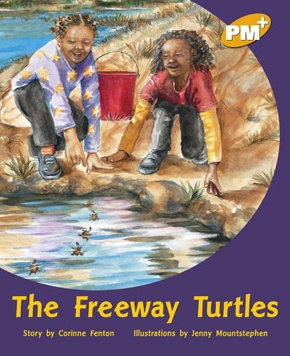 9780170098526: The Freeway Turtles PM PLUS Level 22 Gold