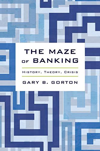 9780190204839: The Maze of Banking: History, Theory, Crisis