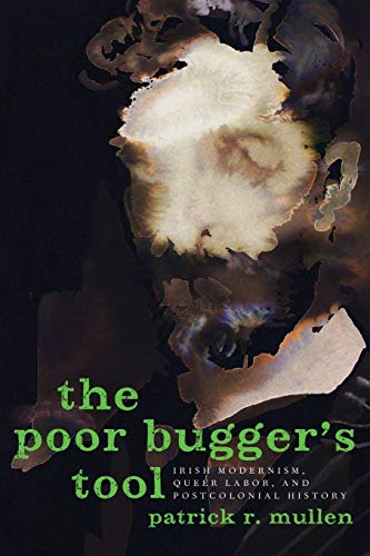 9780190604264: Poor Bugger's Tool: Irish Modernism, Queer Labor, and Postcolonial History