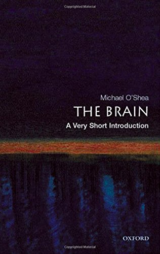 The Brain: A Very Short Introduction (Very: O'Shea, Michael