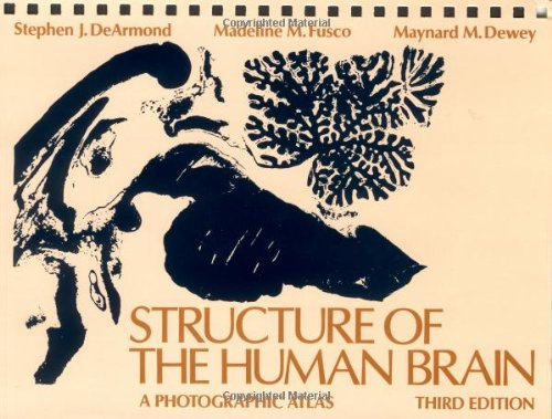 9780195043570: Structure of the Human Brain: A Photographic Atlas