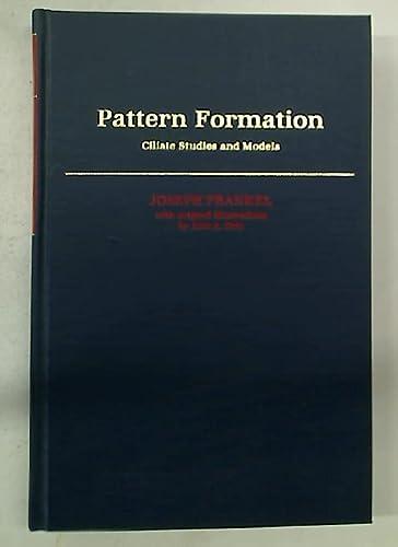 Pattern Formation, Climate Studies & Models,: Frankel, Joseph,