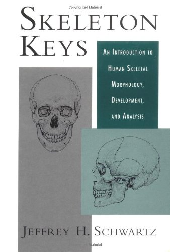 9780195056389: Skeleton Keys: An Introduction to Human Skeletal Morphology, Development, and Analysis