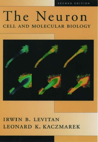 9780195100211: The Neuron: Cell and Molecular Biology