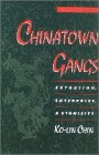 9780195102383: Chinatown Gangs: Extortion, Enterprise, and Ethnicity (Studies in Crime and Public Policy)