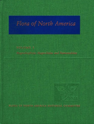 9780195112467: Flora of North America: North of Mexico; Volume 3: Magnoliophyta: Magnoliidae and Hamamelidae
