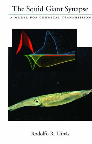 9780195116526: The Squid Giant Synapse: A Model for Chemical Transmission