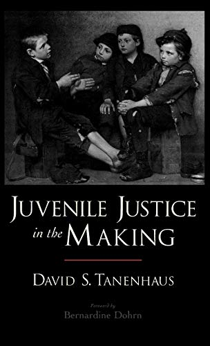 9780195160451: Juvenile Justice in the Making (Studies in Crime and Public Policy)