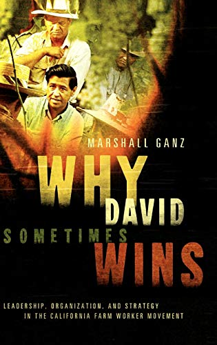 9780195162011: Why David Sometimes Wins: Leadership, Strategy and the Organization in the California Farm Worker Movement