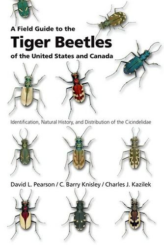 9780195181555: A Field Guide to the Tiger Beetles of the United States and Canada: Identification, Natural History, and Distribution of the Cicindelidae