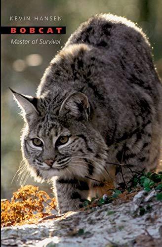 9780195183030: Bobcat: Master of Survival