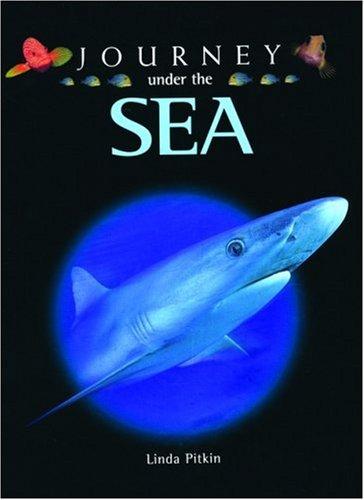 9780195219715: Journey Under the Sea
