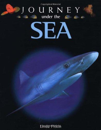 9780195219722: Journey under the Sea
