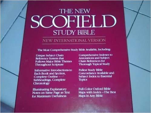 9780195280852: 6271rl Blue Plain NIV/Nssb New Scofield Study Bible Leather