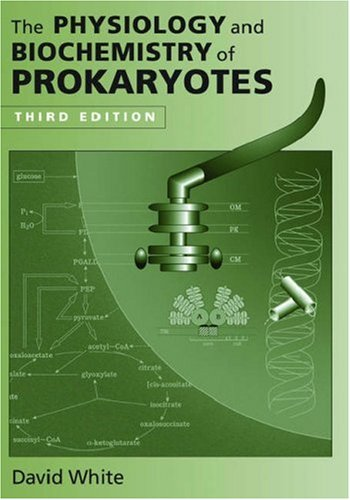Download The Physiology and Biochemistry of Prokaryotes