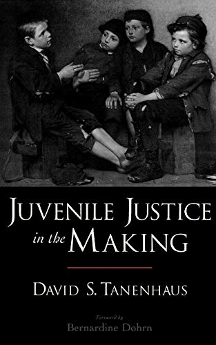 9780195306507: Juvenile Justice in the Making (Studies in Crime and Public Policy)