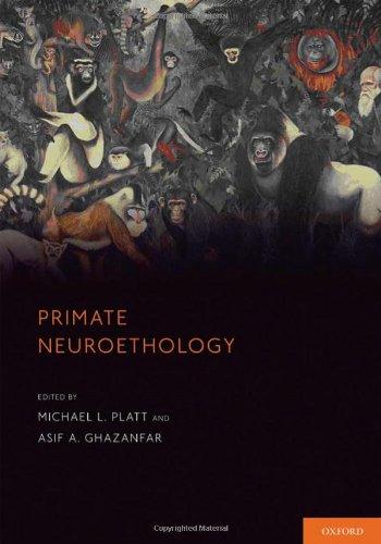 9780195326598: Primate Neuroethology