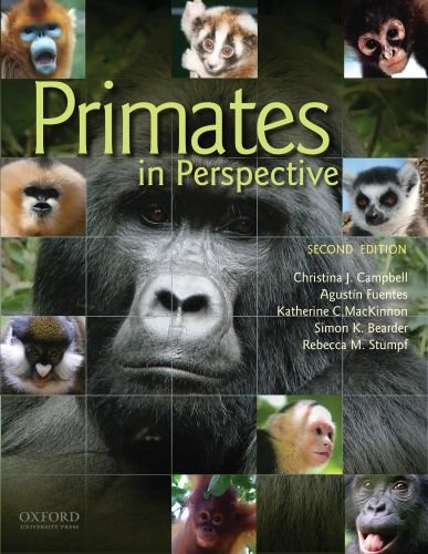 Primates In Persective. Second Edition: Christina J. Campbell