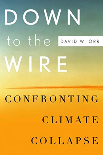 Down to the Wire: Confronting Climate Collapse: Orr, David W.