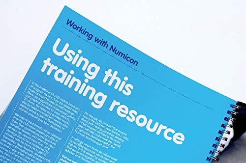 9780198487081: Numicon: Working with Numicon Training Resource and DVD