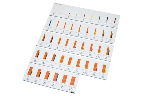 9780198489436: Numicon: 0-41 Number Rod Number Line