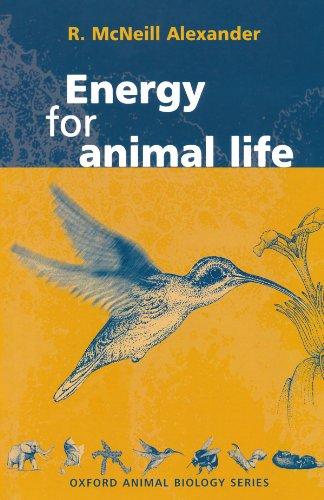 9780198500520: Energy for Animal Life (Oxford Animal Biology Series)