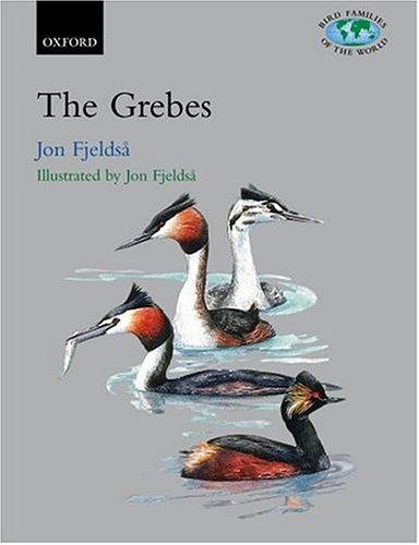9780198500643: Grebes: Podicipedidae (Bird Families of the World)