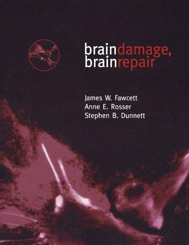 9780198523376: Brain Damage, Brain Repair