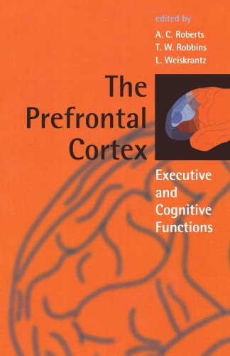 The Prefrontal Cortex Executive and Cognitive Functions