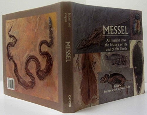 9780198546542: Messel: An Insight into the History of Life and of the Earth