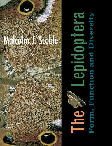 9780198549529: The Lepidoptera: Form, Function, and Diversity