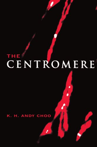 The Centromere (Paperback): K.H.Andy Choo