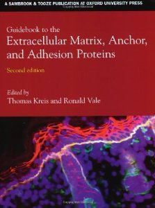 9780198599593: Guidebook to the Extracellular Matrix, Anchor, and Adhesion Proteins