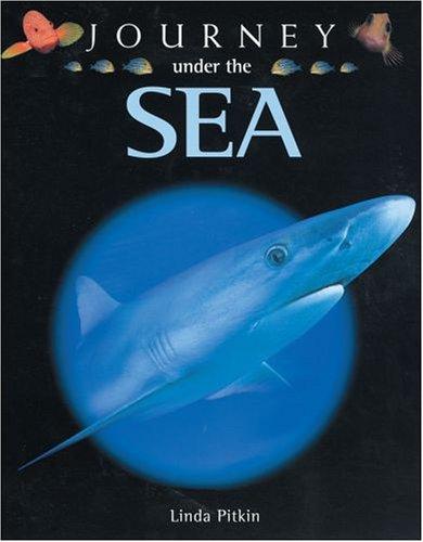 9780199108985: Journey Under the Sea